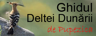 Ghidul Deltei Dunarii